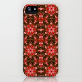 kaleidoscope 20 iPhone Case