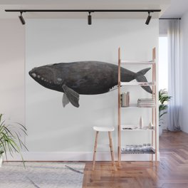 Northern right whale (Eubalaena glacialis) Wall Mural