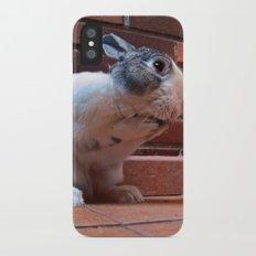 Le Lapin iPhone X Slim Case