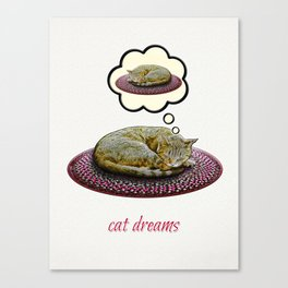 Cat Dreams Canvas Print