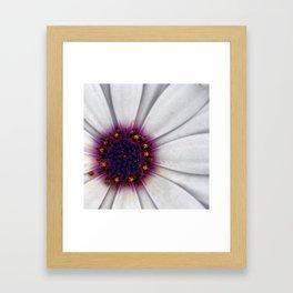 I turn to you  Framed Art Print