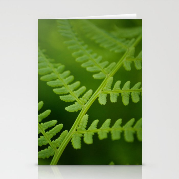 Fern Stationery Cards