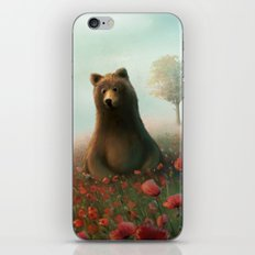 The bear iPhone & iPod Skin