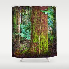New and old rainforest growth Shower Curtain