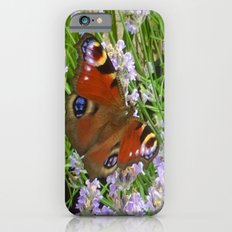 A Peacock Butterfly On A Laveder Bush iPhone 6s Slim Case
