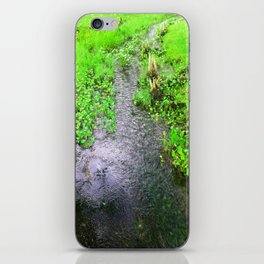 The Little Creek iPhone Skin