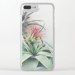 Air Plant Collection II Clear iPhone Case