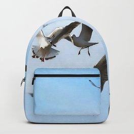 Black Headed Gulls Of The Bosphorus Art  Backpack
