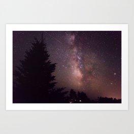 Stars and Pine 2 Art Print