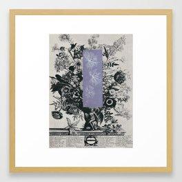 172. Framed Art Print