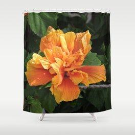 The Golden Double Hibiscus Next Door Shower Curtain