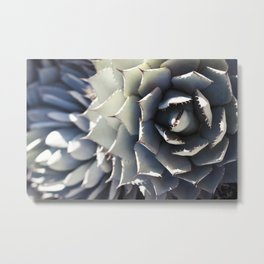 Agave Beauty Metal Print