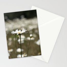 Wildflowers in an Oregon Field Stationery Cards