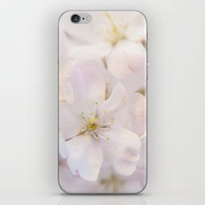 Ornamental Cherry Blossom iPhone & iPod Skin