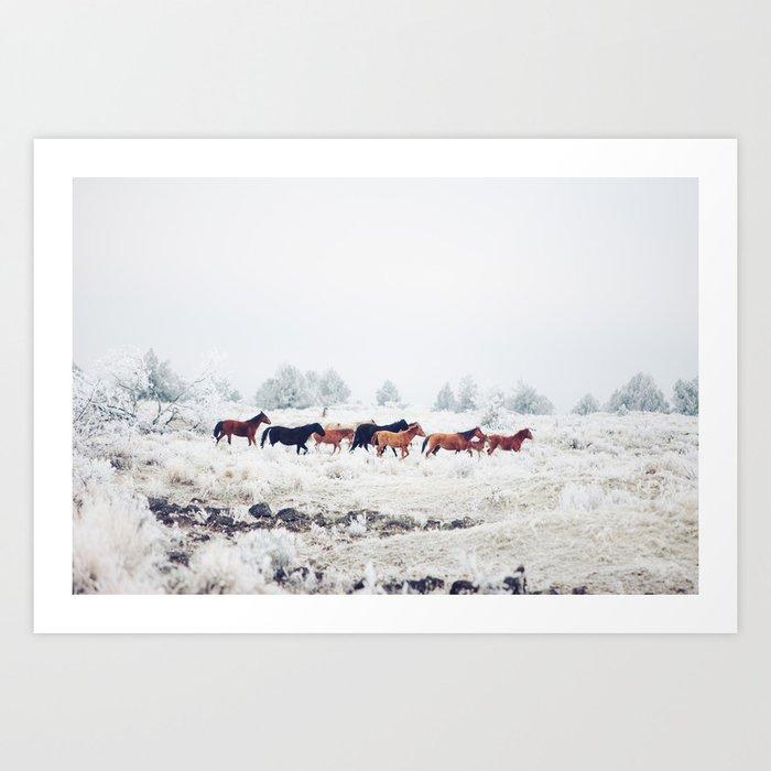 Winter Horse Herd Kunstdrucke