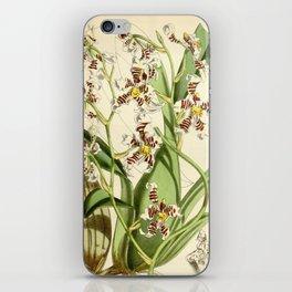 Cyrtochilum zebrinum iPhone Skin