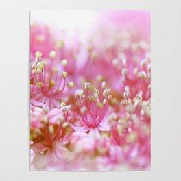 Pretty Pink Flowers Near the Beach  #decor #society6 #buyart Poster