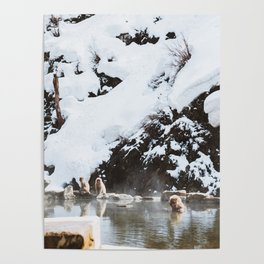 Bath Time in the Hot Springs Poster