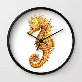 Horse of the seas, Seahorse beauty Wall Clock