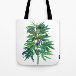 Cannabis Scientific Illustration Tote Bag