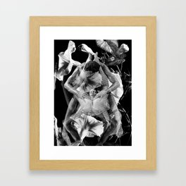 Pleasure Garden Framed Art Print