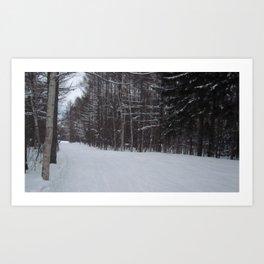 Snowy Path 2 Art Print