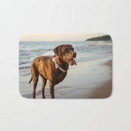 Chocolate labrador retriever at the beach Bath Mat