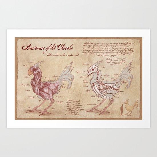 Anatomy of the Chocobo Art Print