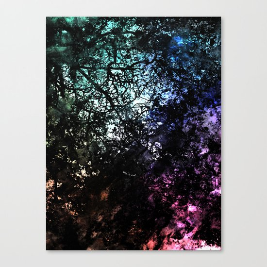 ε Avior Canvas Print