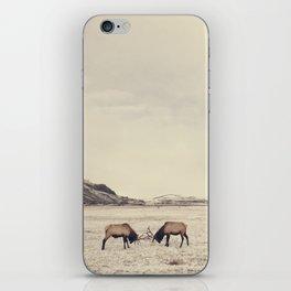 Sparring Elk in Wyoming - Wildlife Photography iPhone Skin