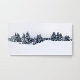 Winterwald Metal Print