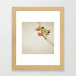 Little Red Eyed Tree Frog Framed Art Print