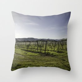 In a Bowl Throw Pillow