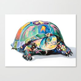 Candy Turtle Canvas Print