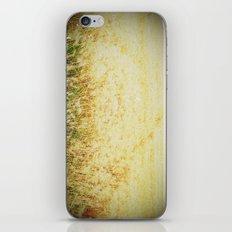 Fields 2 iPhone & iPod Skin