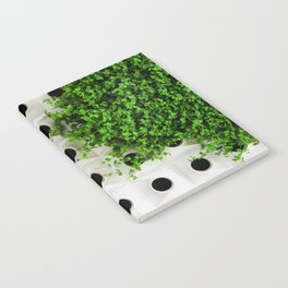 Nature and Structure Notebook