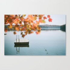 lake side view  Canvas Print
