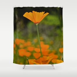 Tall Poppy Shower Curtain