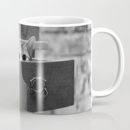 Cat in the closet Coffee Mug