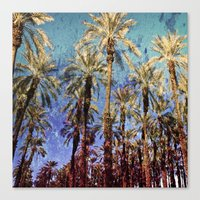 palm trees Canvas Prints featuring Palm Trees by Loveurstyle
