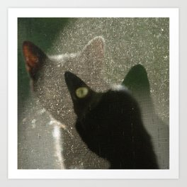 Cat Picatsso Art Print