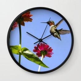 Hummingbird Happiness Wall Clock