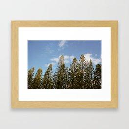 To the Treetops Framed Art Print