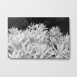 White and Black Metal Print