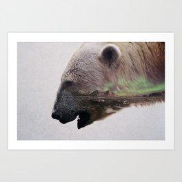 King Of The Arctic Art Print