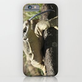 Lace Monitor - Goanna iPhone Case