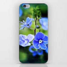 it is spring iPhone & iPod Skin