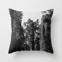Sequoia National Park XII Throw Pillow