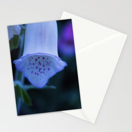 Moonbeam Stationery Cards