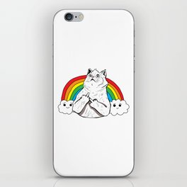Fluff Off Rainbow Cat iPhone Skin